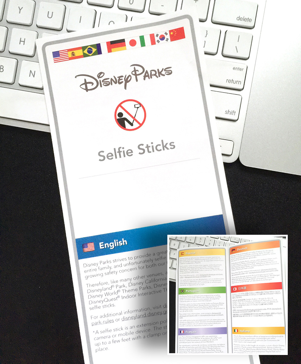 Disney Selfie Stick Brochure